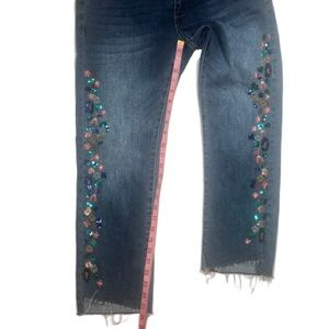 Anthropologie Jeans - Pilcro and the Letterpress Jeans- 30P